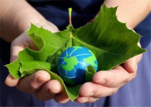 Strategies For Going Green At Home