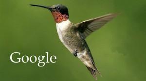 Ce trebuie sa stii despre algoritmul Hummingbird?