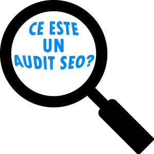 Scopurile si audienta in SEO