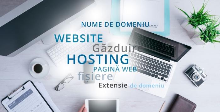 Cand a aparut web hostingul?