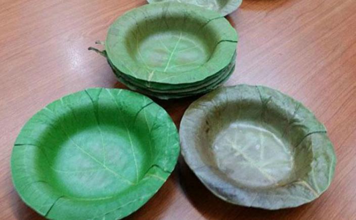 De ce sunt necesare farfuriile de unica folosinta biodegradabile?